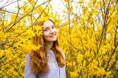 站立在开花的Forsythi附近的美丽的红发少妇 免版税图库摄影