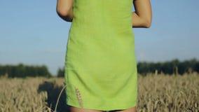 站立在成熟麦子耳朵中的一个领域的一件绿色礼服的女孩 股票视频