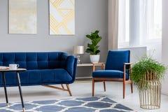 站立在明亮的客厅内部真正的照片的沙发旁边的藏青色扶手椅子与新鲜的植物,现代艺术绘画的和 免版税库存照片