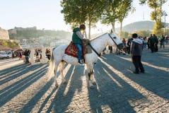 站立在晚上太阳光芒的年轻马车手在秋天城市节日Tbilisoba期间 库存照片