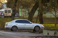 站立在朦胧的绿色树下的一辆新的白色汽车在夏天明亮的天 免版税库存图片