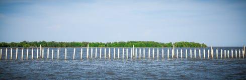 站立在杆的海鸥在轰隆Khun Thian海 库存图片