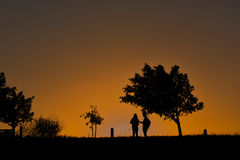 站立在树下的夫妇剪影在日落期间 免版税库存照片