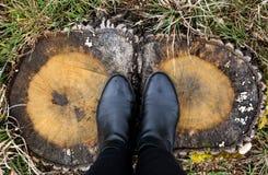 站立在树干的一个时髦少妇的脚 免版税库存照片