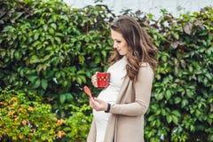 站立在树篱和喝从杯子的一个怀孕的少妇 公园怀孕的松弛妇女 免版税库存图片