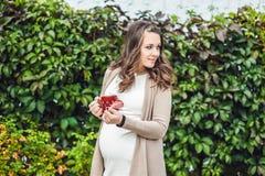 站立在树篱和喝从杯子的一个怀孕的少妇 公园怀孕的松弛妇女 免版税库存照片