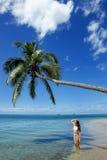 站立在棕榈树下在Makaha ` islan的比基尼泳装的少妇 免版税库存图片