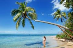 站立在棕榈树下的比基尼泳装的少妇在Makaha& x27; 一islan 免版税库存照片