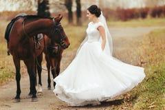 站立在棕色马后的新娘旋转 库存图片