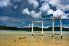 站立在水中的原始和时髦的木摇摆 免版税库存图片