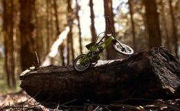 站立在注册森林的微型自行车玩具 免版税库存照片