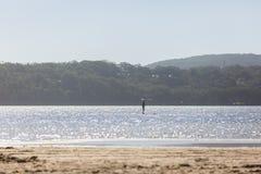站立在湖的桨搭乘 免版税库存照片