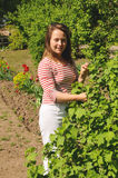 站立在灌木无核小葡萄干附近的少妇 免版税库存照片