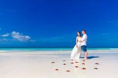 站立在热带海滩的新娘和新郎支持与红色starfi 免版税库存图片