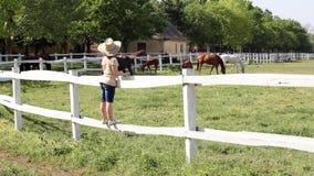 站立在畜栏的小女孩 股票录像
