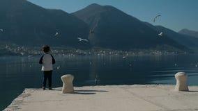 站立在码头的慢动作小男孩,投掷晃动入湖水 影视素材