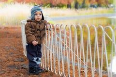 站立在秋天公园的小男孩 库存照片