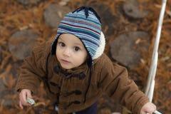 站立在秋天公园的小男孩 图库摄影