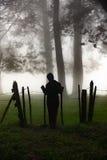 站立在篱芭在一个有薄雾的森林里 免版税库存图片