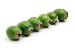 站立在线的热带水果feijoa 库存图片