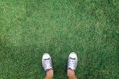 站立在绿色的运动鞋 库存图片