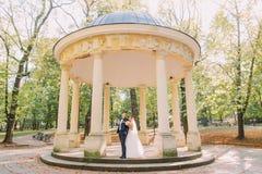 站立在老凹室的愉快的新婚佳偶的美好的构成安置在晴朗的公园 库存图片