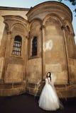 站立在背景的典雅的华美的愉快的新娘老 免版税库存照片