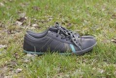 站立在草的鞋子 库存照片