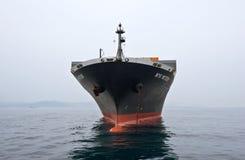 站立在路的集装箱船NYK飞星在船锚 不冻港海湾 东部(日本)海 09 04 2014年 图库摄影