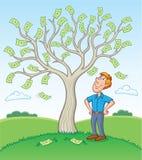 站立在金钱树旁边的人 库存图片