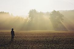 站立在雾的人在日出 免版税库存照片