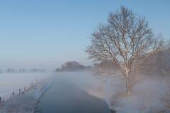 站立在领域之间的一条小小河旁边的树与雪 库存照片