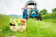 站立在领域的农夫 库存照片