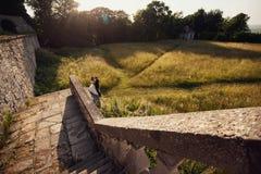 站立在领域的新娘和新郎在城堡附近 库存图片