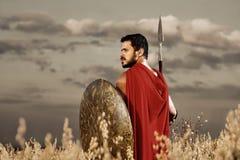 站立在领域的肌肉中世纪战士 免版税图库摄影