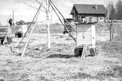 站立在领域的蜂蜂房 免版税库存图片