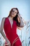 站立在领域的年轻美丽的长期妇女红色礼服画象  免版税库存照片