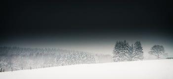 站立在黑暗的多雪的情况的树 免版税库存图片