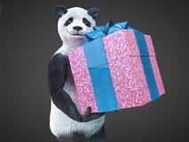 站立在黑暗的背景的熊猫动物字符礼物盒惊奇假日 免版税库存照片