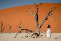 站立在deadvlei,纳米比亚的白色礼服的亚裔女孩 免版税库存图片