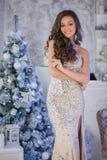 站立在interi的银色庄重装束的年轻美丽的妇女 免版税库存照片