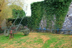 站立对常春藤覆盖的墙壁的农场设备 图库摄影
