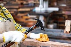 站立建造者的妇女佩带锤击在木的工地工作的被检查的衬衣工作者钉子 库存照片