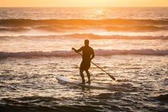 站立桨手剪影在日落 免版税图库摄影