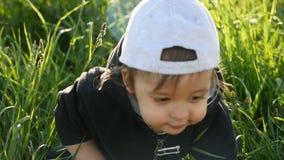 站立用在一个绿色领域的蒲公英的男婴在夏天 股票录像