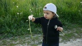 站立用在一个绿色领域的蒲公英的男婴在夏天 影视素材