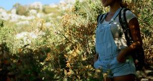 站立用在臀部的手的女性远足者在乡下4k 股票录像