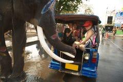 站立的大象嬉戏地飞溅水在Songkran节日的一条街道 免版税库存照片