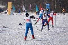 竞争冬天滑冰的种族的滑雪者在30 km 免版税图库摄影