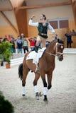 竞争国际斯洛伐克拱形屋顶 免版税库存照片
